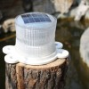 solar buoy lights